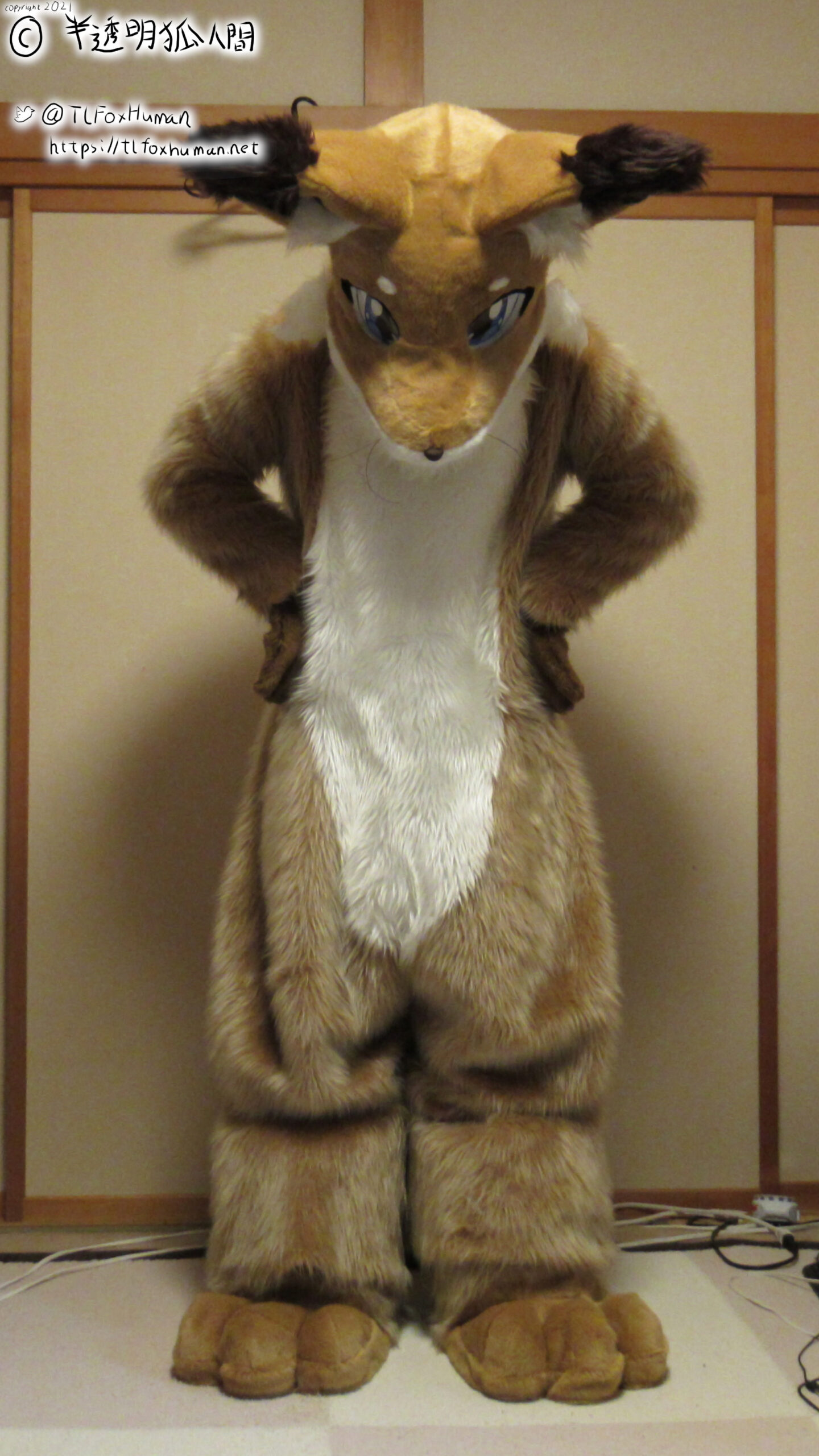 FursuitFriday : 足だけ毛替わり?